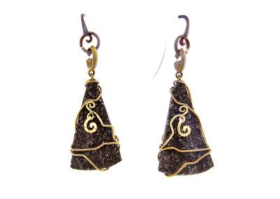 fossil wood earrings
