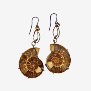 mizar - ammonite fossils earrings pic2